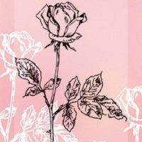 Marianne design, clearstamp, border, rose